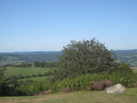 Mont Gargan 17