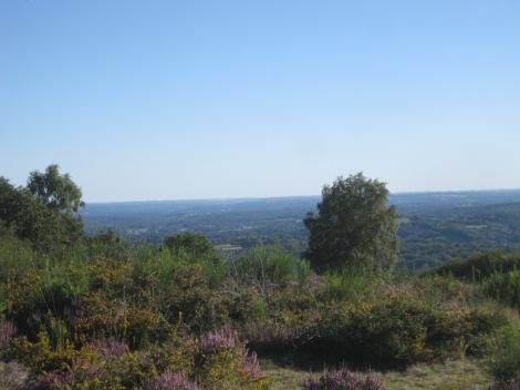 Mont Gargan 19