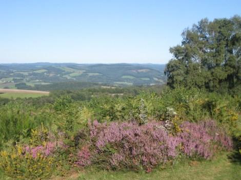 Mont Gargan 8