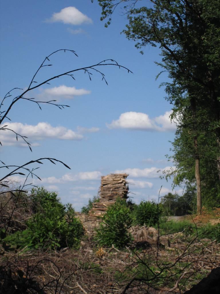 route de St-Nicolas Courbefy 1