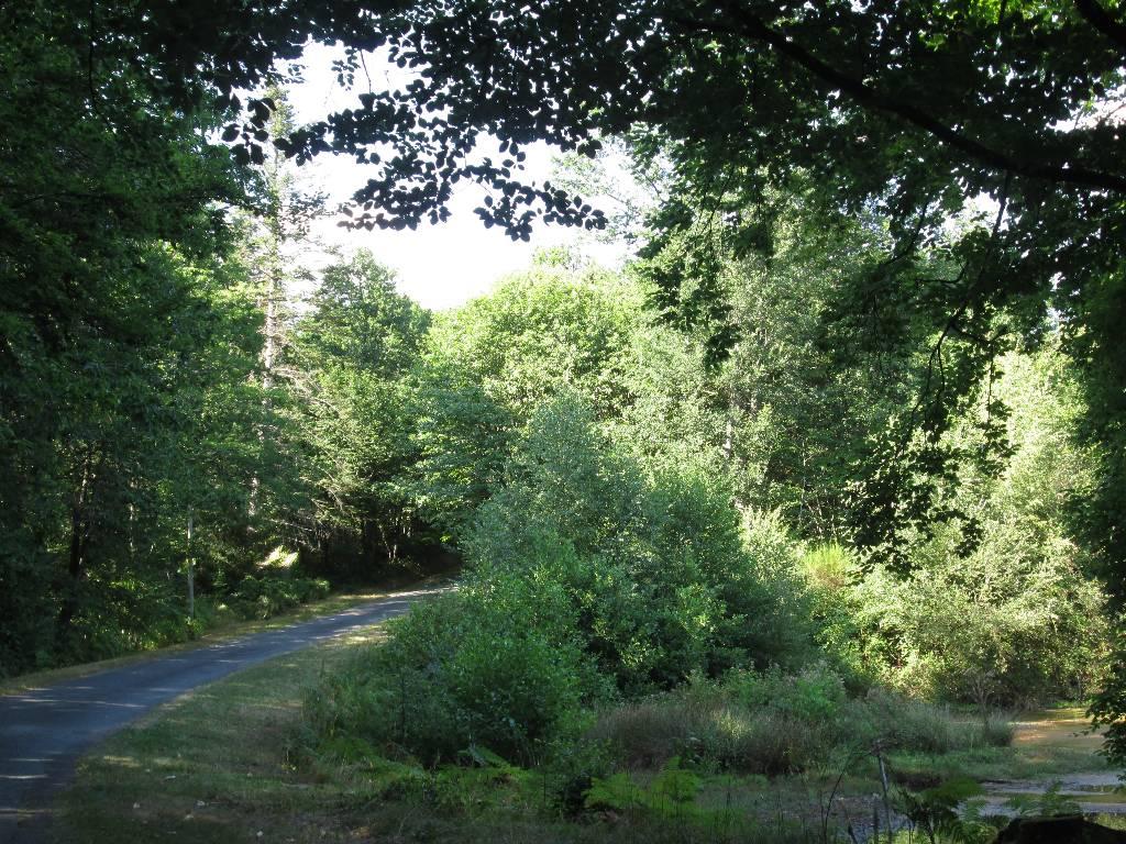 route de St-Nicolas Courbefy 5