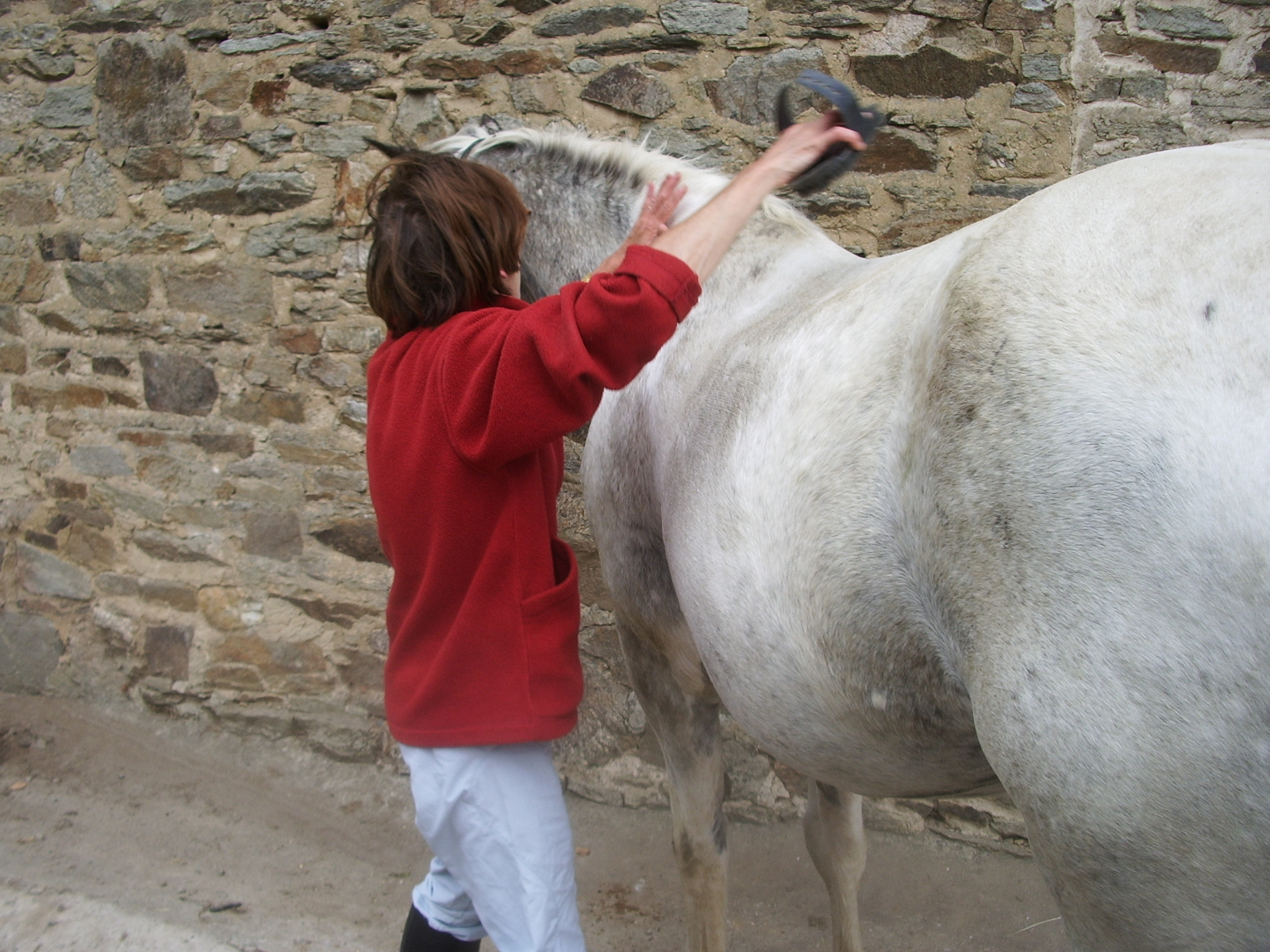 cheval12