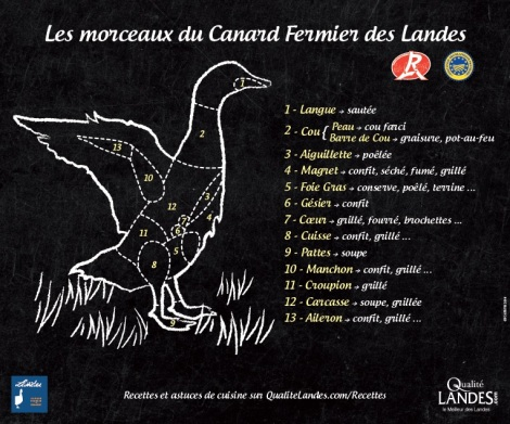 panneau-canard-ok